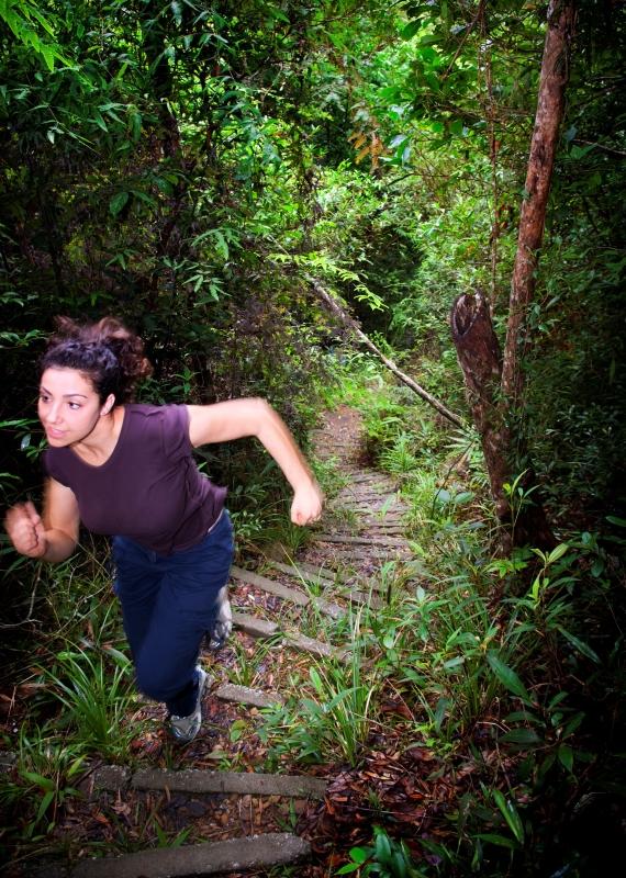 ריצה בג'ונגל