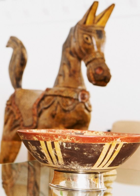 סוס ושתייה