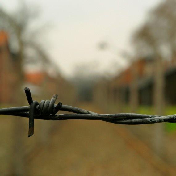 גדר תיל שואה