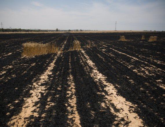 נזק שנגרם לשדה חיטה מעפיפון טרור