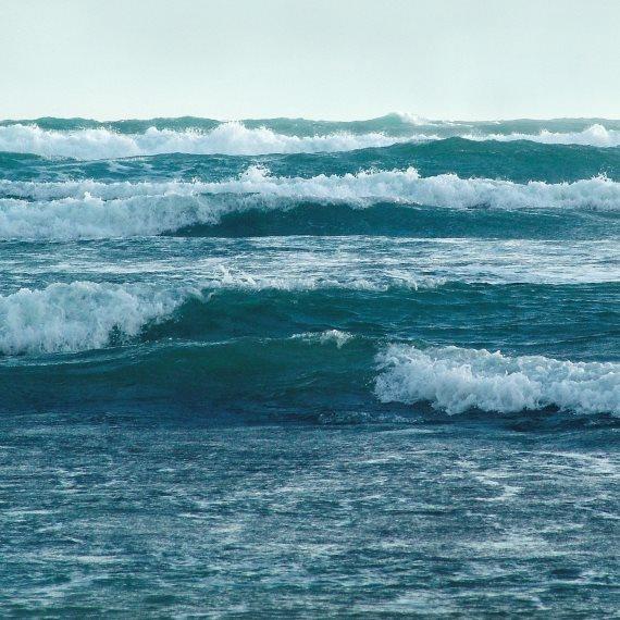 """""""הים שלנו גוסס"""""""