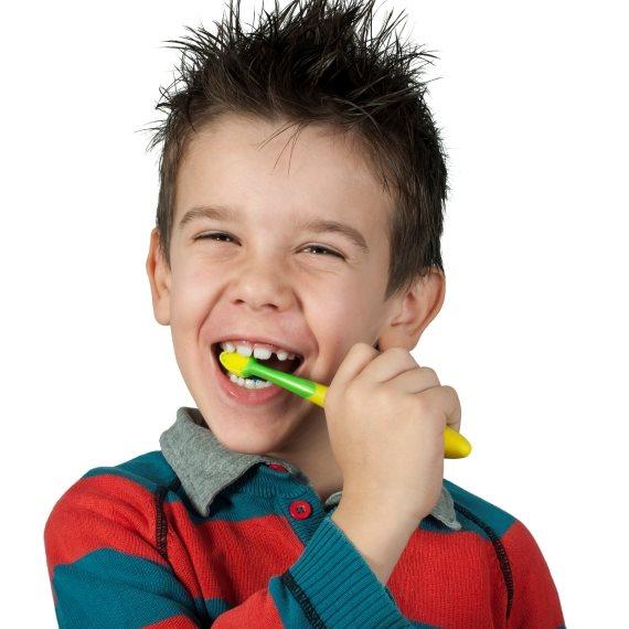 מצחצח עם מברשת שיניים של מפרץ ההרפתקאות