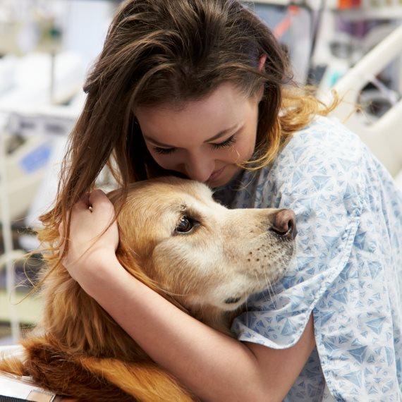"""""""האם אני אשמה בהעברת המחלות מאחת לשנייה אצל הכלב שלי?"""""""