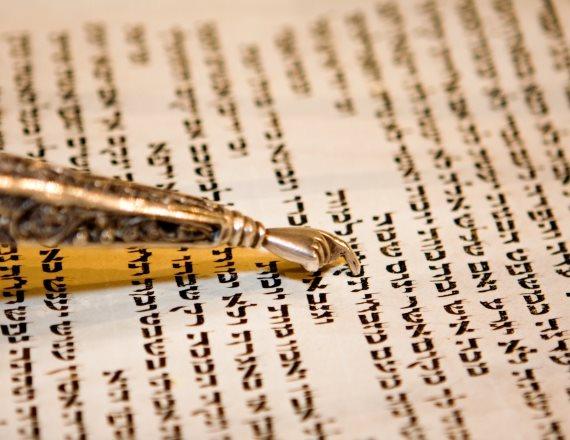 פרשת השבוע עם הרב אברהם הכהן