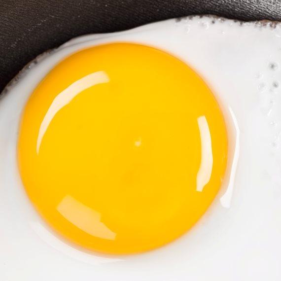 המלצה לאכול ביצים