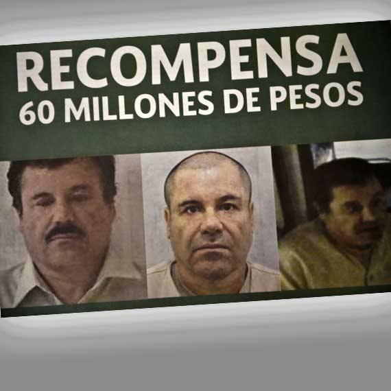 2015: כמעט 4 מיליון דולר למוסר המידע שיוביל ללכידתו. אל צ'אפו