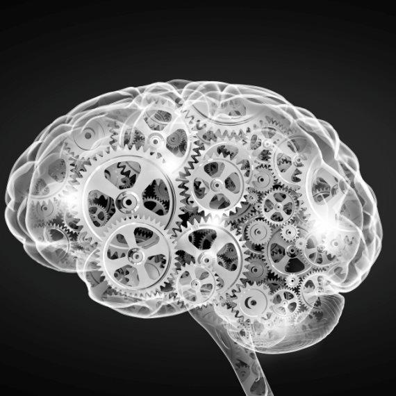המוח עדיין חי?