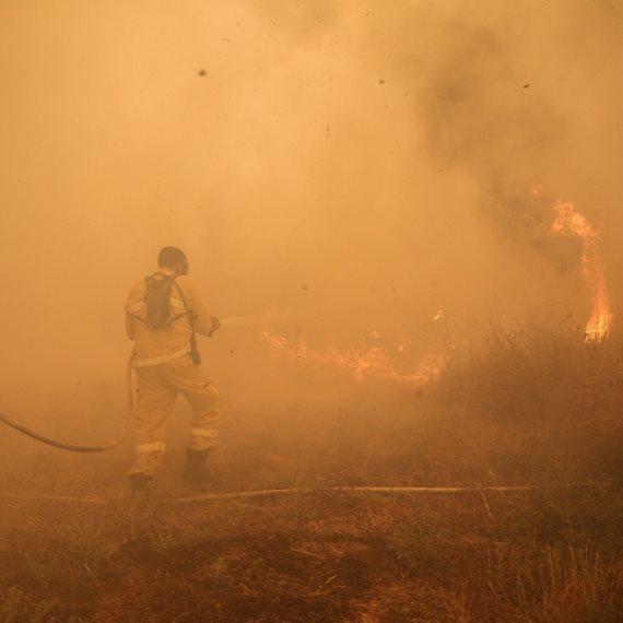 שריפה, צילום מתוך ארכיון