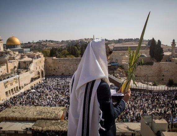 סוכות בירושלים, אולי שם יהיה נעים יותר?