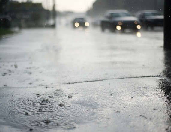 """""""הגשם תמיד מפתיע אותנו מחדש"""""""