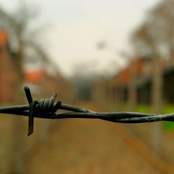 מן השואה אל הגבורה