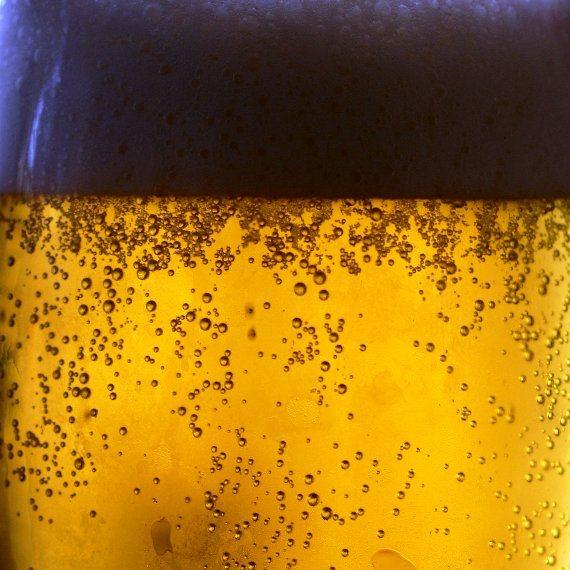 הבירה מוגנת