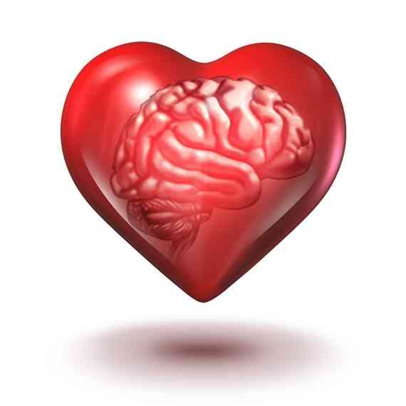 """""""לפעמים הלב מבין יותר מהשכל"""""""