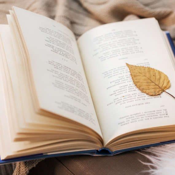המלצות ספרים