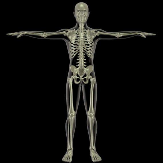 לחזק את עצמות הגוף