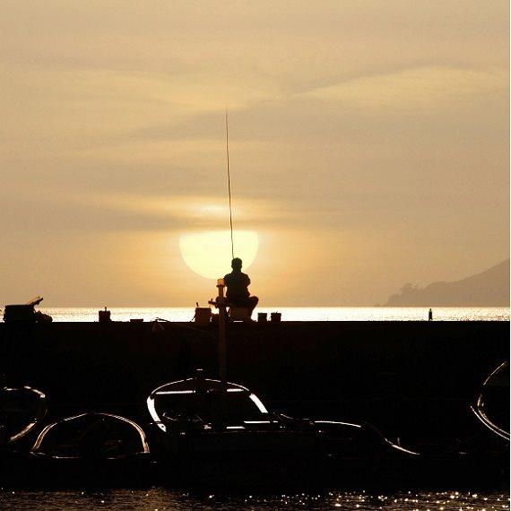 מחאת הדייגים