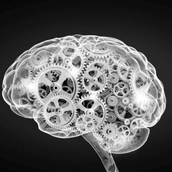 גידול שפיר במוח