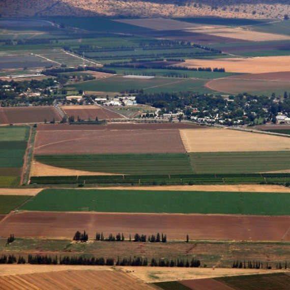 מגרש חקלאי - צילום ארכיון