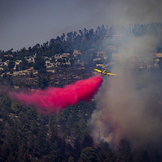 השרפות בהרי ירושלים