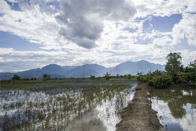 האזור המוצף בתאילנד // צילום: אי.אף.פי